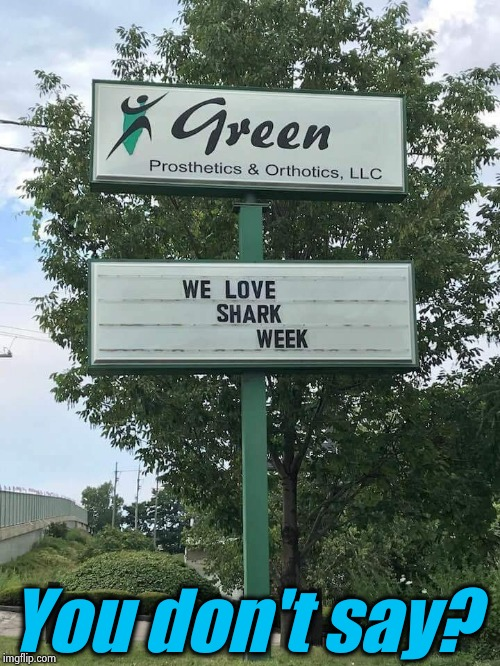 I would of never guessed... | You don't say? | image tagged in shark week/prosthetics,funny,evilmandoevil,memes,repost | made w/ Imgflip meme maker