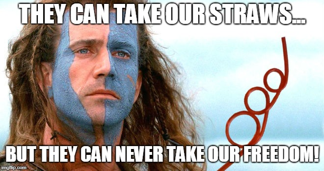 FREEDOM! | THEY CAN TAKE OUR STRAWS... BUT THEY CAN NEVER TAKE OUR FREEDOM! | image tagged in freedom,straws,plastic straws,democrats,braveheart,mel gibson | made w/ Imgflip meme maker