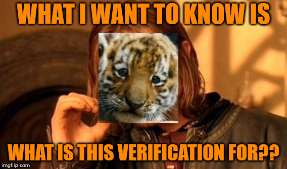 One Does Not Simply Meme | WHAT I WANT TO KNOW IS WHAT IS THIS VERIFICATION FOR?? | image tagged in memes,one does not simply | made w/ Imgflip meme maker