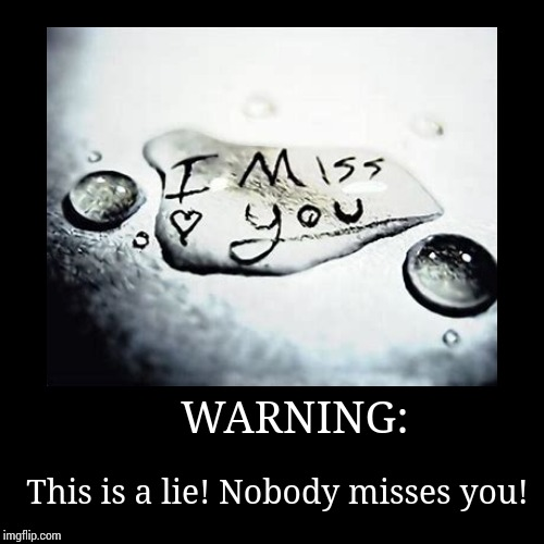 WARNING: | This is a lie! Nobody misses you! | image tagged in funny,demotivationals | made w/ Imgflip demotivational maker