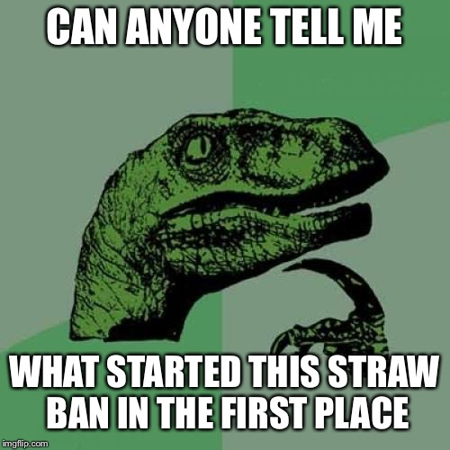 That's pretty much the front page this week | CAN ANYONE TELL ME WHAT STARTED THIS STRAW BAN IN THE FIRST PLACE | image tagged in memes,philosoraptor,straws | made w/ Imgflip meme maker