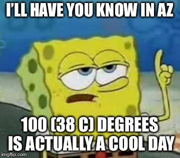 Ill Have You Know Spongebob Meme | I'LL HAVE YOU KNOW IN AZ 100 (38 C) DEGREES IS ACTUALLY A COOL DAY | image tagged in memes,ill have you know spongebob | made w/ Imgflip meme maker