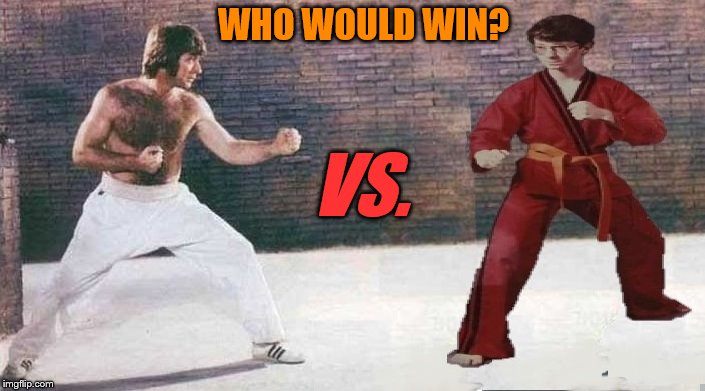 Consider Carefully: Lifetime of Training VS. 14 Years of Rage | WHO WOULD WIN? VS. | image tagged in chuck norris vs karate kid | made w/ Imgflip meme maker