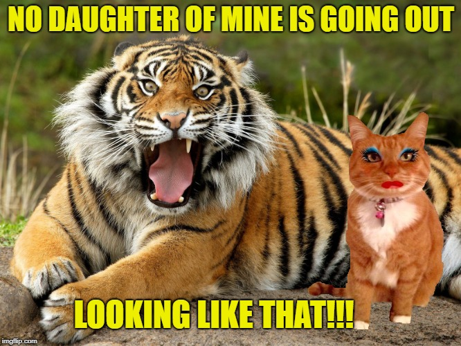 Tiger parenting  (Tiger Week Jul 29 - Aug 5, A TigerLegend1046 event) | NO DAUGHTER OF MINE IS GOING OUT LOOKING LIKE THAT!!! | image tagged in funny memes,tiger week 2018,tiger week,tigerlegend1046 | made w/ Imgflip meme maker