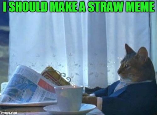 I Should Buy A Boat Cat Meme | I SHOULD MAKE A STRAW MEME | image tagged in memes,i should buy a boat cat | made w/ Imgflip meme maker