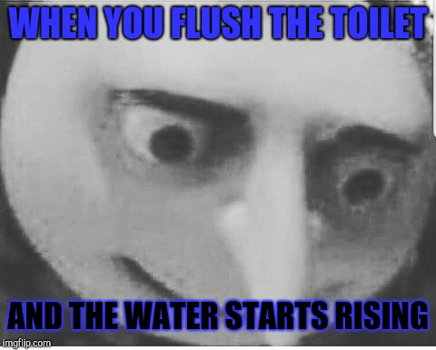 Toilet troubles | WHEN YOU FLUSH THE TOILET AND THE WATER STARTS RISING | image tagged in toilet humor | made w/ Imgflip meme maker