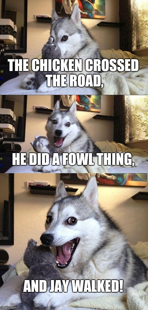 Chicken crossing the road. | THE CHICKEN CROSSED THE ROAD, HE DID A FOWL THING, AND JAY WALKED! | image tagged in memes,bad pun dog,why the chicken cross the road | made w/ Imgflip meme maker