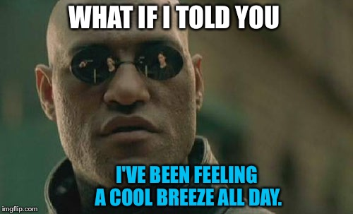 Matrix Morpheus Meme | WHAT IF I TOLD YOU I'VE BEEN FEELING A COOL BREEZE ALL DAY. | image tagged in memes,matrix morpheus | made w/ Imgflip meme maker