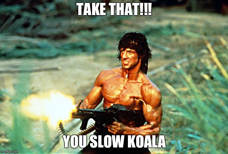 Rambo shooting | TAKE THAT!!! YOU SLOW KOALA | image tagged in rambo shooting | made w/ Imgflip meme maker