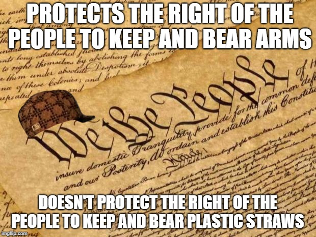Constitution | PROTECTS THE RIGHT OF THE PEOPLE TO KEEP AND BEAR ARMS DOESN'T PROTECT THE RIGHT OF THE PEOPLE TO KEEP AND BEAR PLASTIC STRAWS | image tagged in constitution,scumbag | made w/ Imgflip meme maker