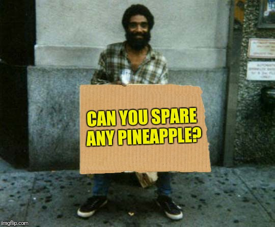 panhandler blank sign | CAN YOU SPARE ANY PINEAPPLE? | image tagged in panhandler blank sign | made w/ Imgflip meme maker