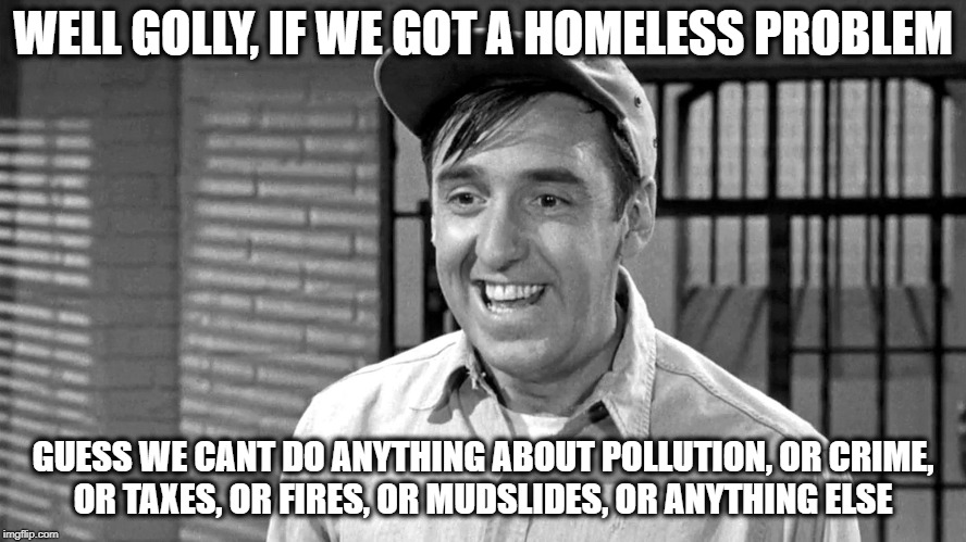 Golly | WELL GOLLY, IF WE GOT A HOMELESS PROBLEM GUESS WE CANT DO ANYTHING ABOUT POLLUTION, OR CRIME, OR TAXES, OR FIRES, OR MUDSLIDES, OR ANYTHING  | image tagged in golly | made w/ Imgflip meme maker