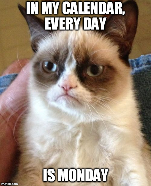 Grumpy Cat Meme | IN MY CALENDAR, EVERY DAY IS MONDAY | image tagged in memes,grumpy cat | made w/ Imgflip meme maker