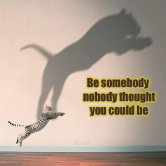 Tiger Week!  | Be somebody nobody thought you could be | image tagged in tiger week 2018,inspirational,inspirational quote | made w/ Imgflip meme maker