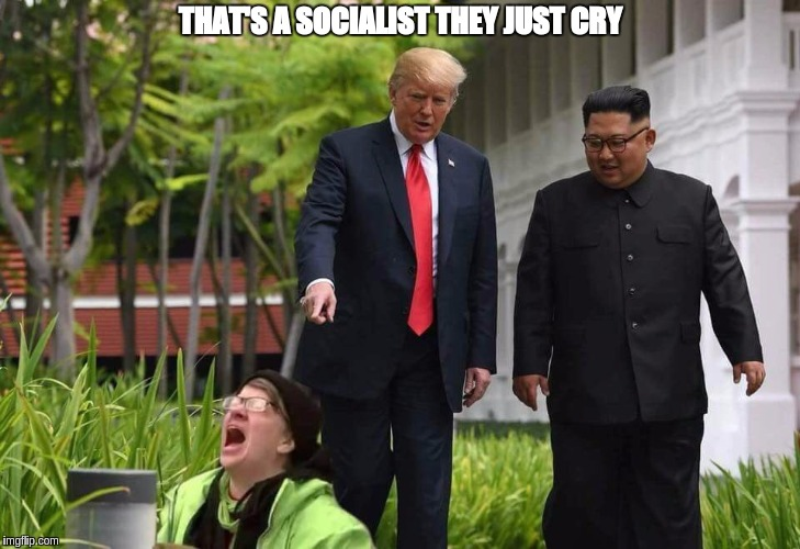 Trump and Kim spot a Socialist | THAT'S A SOCIALIST THEY JUST CRY | image tagged in donald trump,kim jong un,the great awakening,maga,megaman | made w/ Imgflip meme maker