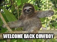WELCOME BACK COWBOY | image tagged in sloth | made w/ Imgflip meme maker