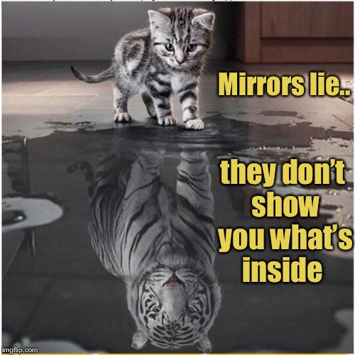 Tigers Week!  | Mirrors lie.. they don't show you what's inside | image tagged in tiger week 2018,inspirational quote,inspirational,dream big | made w/ Imgflip meme maker