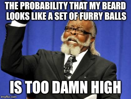 Too Damn High Meme | THE PROBABILITY THAT MY BEARD LOOKS LIKE A SET OF FURRY BALLS IS TOO DAMN HIGH | image tagged in memes,too damn high | made w/ Imgflip meme maker