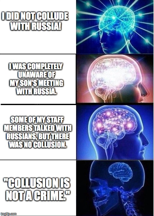 """Collusion is not a crime."" -Donald Trump 