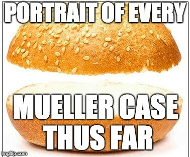 Nothing burger |  PORTRAIT OF EVERY; MUELLER CASE THUS FAR | image tagged in nothing burger | made w/ Imgflip meme maker