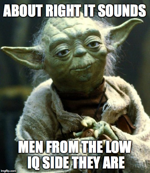 Star Wars Yoda Meme | ABOUT RIGHT IT SOUNDS MEN FROM THE LOW IQ SIDE THEY ARE | image tagged in memes,star wars yoda | made w/ Imgflip meme maker