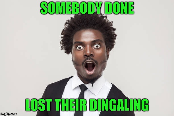 SOMEBODY DONE LOST THEIR DINGALING | made w/ Imgflip meme maker