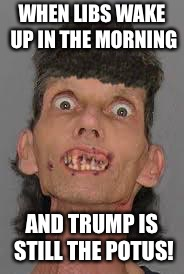 Meth Zombeh | WHEN LIBS WAKE UP IN THE MORNING AND TRUMP IS STILL THE POTUS! | image tagged in meth zombeh | made w/ Imgflip meme maker
