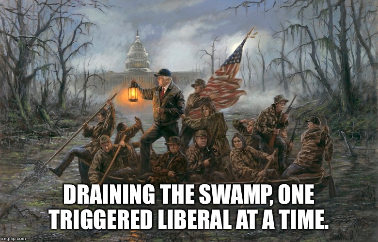 DRAINING THE SWAMP, ONE TRIGGERED LIBERAL AT A TIME. | image tagged in donald trump | made w/ Imgflip meme maker