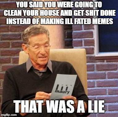 some one come clean this house | YOU SAID YOU WERE GOING TO CLEAN YOUR HOUSE AND GET SHIT DONE INSTEAD OF MAKING ILL FATED MEMES THAT WAS A LIE | image tagged in memes,maury lie detector,cleaning,lie,meme,maury | made w/ Imgflip meme maker