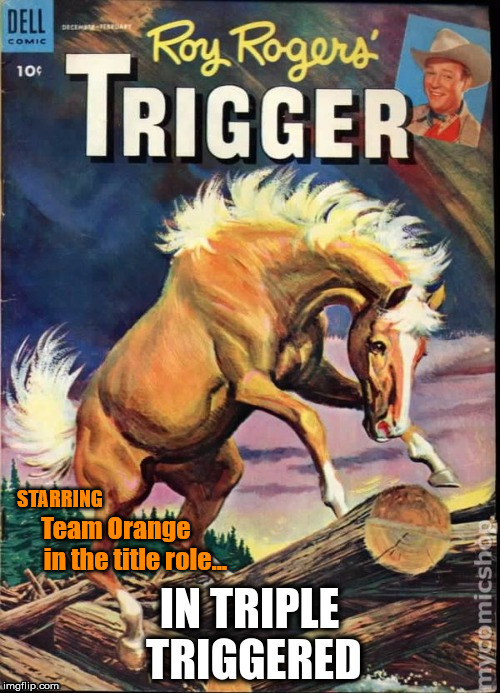 TripleTriggered | STARRING Team Orange       in the title role... | image tagged in tripletriggered | made w/ Imgflip meme maker