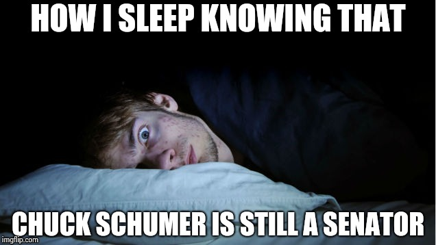 Night Terror | HOW I SLEEP KNOWING THAT CHUCK SCHUMER IS STILL A SENATOR | image tagged in night terror | made w/ Imgflip meme maker