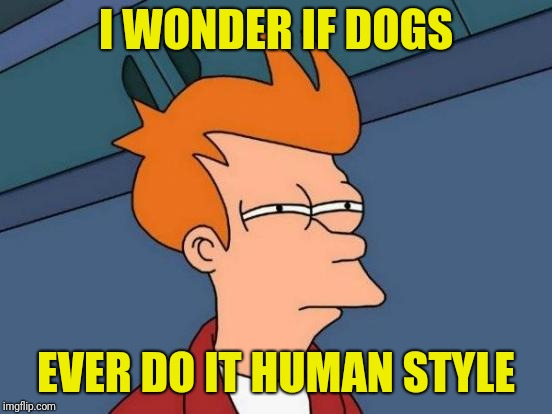 Futurama Fry Meme |  I WONDER IF DOGS; EVER DO IT HUMAN STYLE | image tagged in memes,futurama fry | made w/ Imgflip meme maker