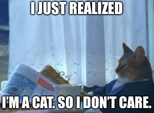 I Should Buy A Boat Cat | I JUST REALIZED I'M A CAT. SO I DON'T CARE. | image tagged in memes,i should buy a boat cat | made w/ Imgflip meme maker