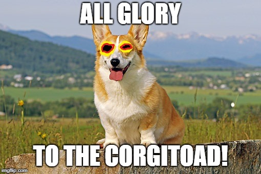 Corgi as Hypnotoad | ALL GLORY TO THE CORGITOAD! | image tagged in corgi,hypnotoad,futurama | made w/ Imgflip meme maker