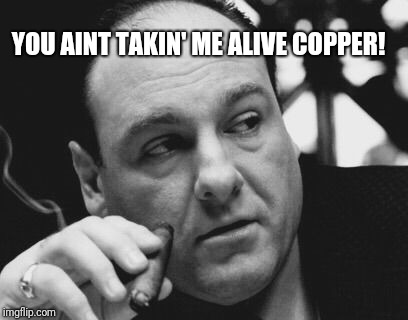 Tony Soprano Admin Gangster | YOU AINT TAKIN' ME ALIVE COPPER! | image tagged in tony soprano admin gangster | made w/ Imgflip meme maker
