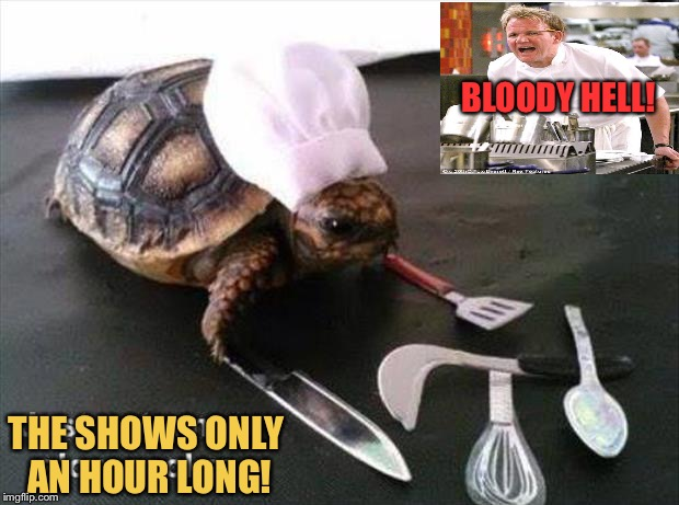 Don't ask him to make turtle soup. | BLOODY HELL! THE SHOWS ONLY AN HOUR LONG! | image tagged in chef gordon ramsay,memes,funny,slow | made w/ Imgflip meme maker