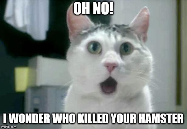 OMG Cat | OH NO! I WONDER WHO KILLED YOUR HAMSTER | image tagged in memes,omg cat | made w/ Imgflip meme maker