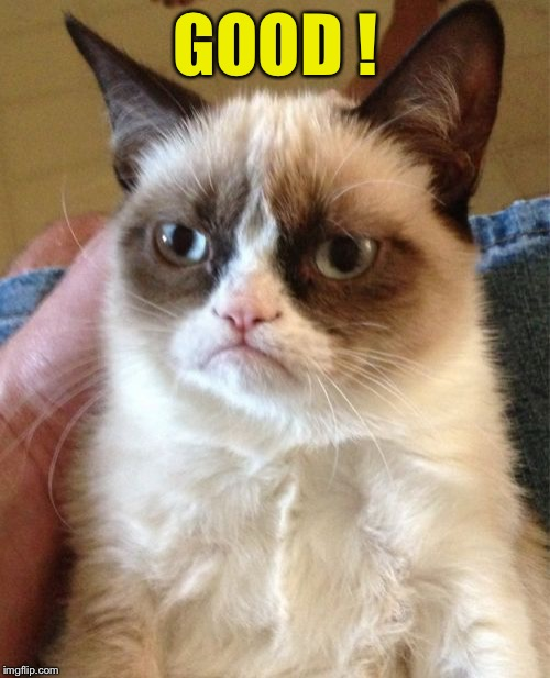Grumpy Cat Meme | GOOD ! | image tagged in memes,grumpy cat | made w/ Imgflip meme maker
