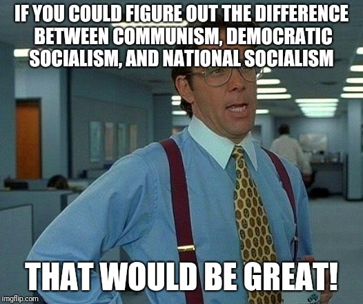 That Would Be Great Meme | IF YOU COULD FIGURE OUT THE DIFFERENCE BETWEEN COMMUNISM, DEMOCRATIC SOCIALISM, AND NATIONAL SOCIALISM THAT WOULD BE GREAT! | image tagged in memes,that would be great | made w/ Imgflip meme maker
