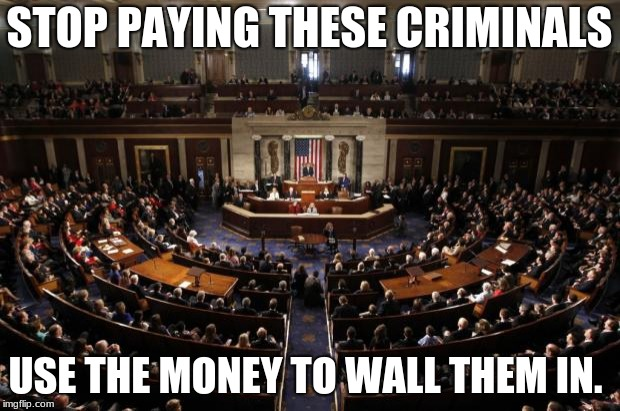 congress | STOP PAYING THESE CRIMINALS USE THE MONEY TO WALL THEM IN. | image tagged in congress | made w/ Imgflip meme maker