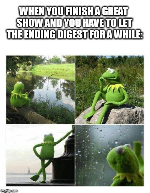 WHEN YOU FINISH A GREAT SHOW AND YOU HAVE TO LET THE ENDING DIGEST FOR A WHILE: | image tagged in kermit sad montage compilation | made w/ Imgflip meme maker
