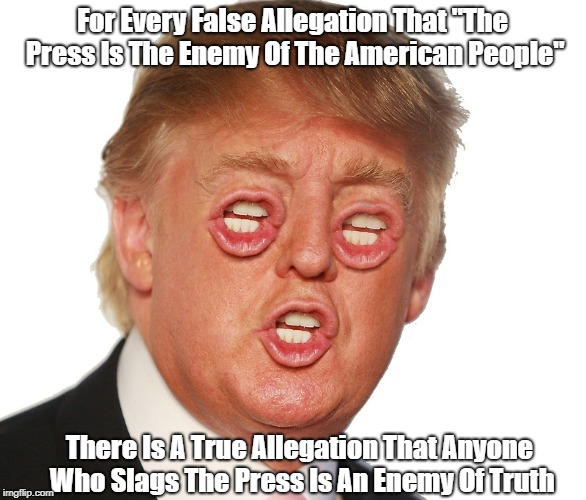"For Every False Allegation That ""The Press Is The Enemy Of The American People"" There Is A True Allegation That Anyone Who Slags The Press I 