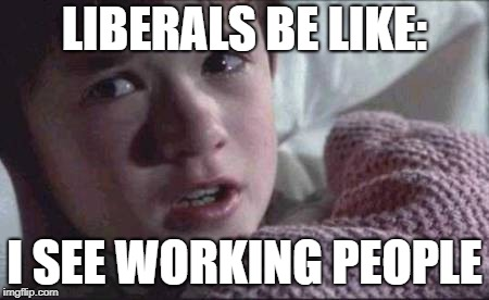 I See Dead People | LIBERALS BE LIKE: I SEE WORKING PEOPLE | image tagged in memes,i see dead people | made w/ Imgflip meme maker