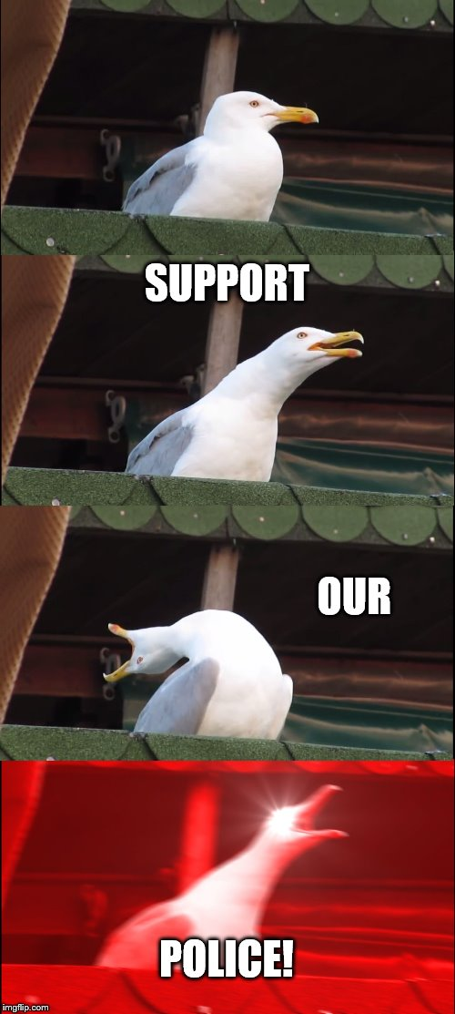 Inhaling Seagull Meme | SUPPORT OUR POLICE! | image tagged in memes,inhaling seagull | made w/ Imgflip meme maker