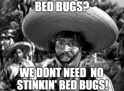 Don't Need No Stinkin' Bed Bugs | BED BUGS? WE DONT NEED  NO STINKIN' BED BUGS! | image tagged in badges,badges we dont need no stinking badges,bed bugs,classic movies,stink,movie quotes | made w/ Imgflip meme maker