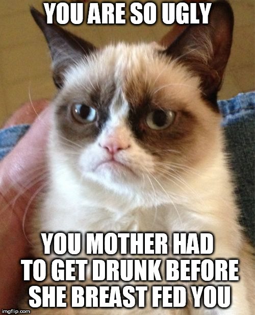 Grumpy Cat | YOU ARE SO UGLY YOU MOTHER HAD TO GET DRUNK BEFORE SHE BREAST FED YOU | image tagged in memes,grumpy cat | made w/ Imgflip meme maker