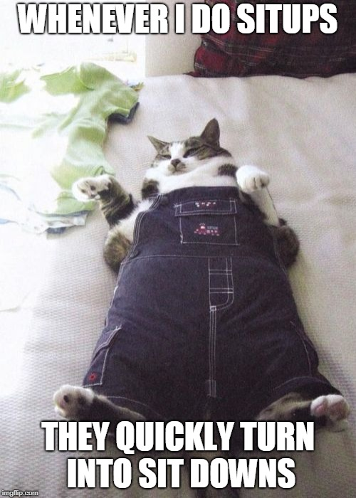 Fat Cat | WHENEVER I DO SITUPS THEY QUICKLY TURN INTO SIT DOWNS | image tagged in memes,fat cat,sit ups,exercise,fat cats exercise | made w/ Imgflip meme maker