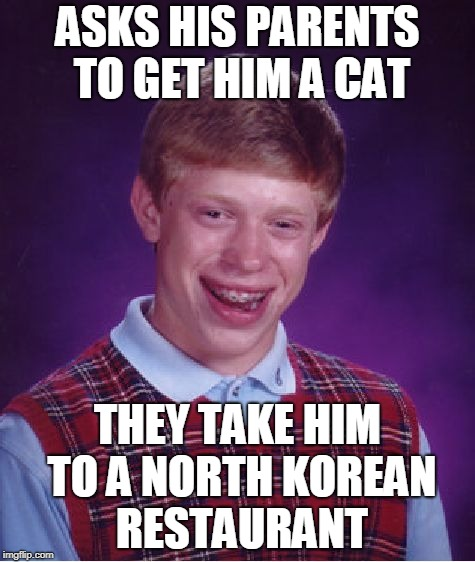 Red bean paste sauce, or marinade with sesame seeds? (̶◉͛‿◉̶) | ASKS HIS PARENTS TO GET HIM A CAT THEY TAKE HIM TO A NORTH KOREAN RESTAURANT | image tagged in memes,bad luck brian,cat,cat lover,bbq,parents just don't understand | made w/ Imgflip meme maker