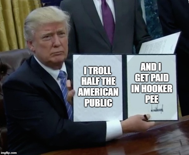 Trump Bill Signing Meme | I TROLL HALF THE AMERICAN PUBLIC AND I GET PAID IN HOOKER PEE | image tagged in memes,trump bill signing | made w/ Imgflip meme maker