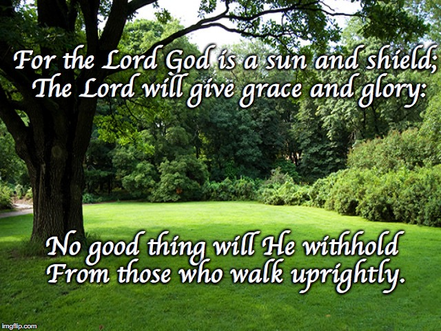 For the Lord God is a sun and shield; The Lord will give grace and glory: No good thing will He withhold  From those who walk uprightly. | image tagged in sun and shade | made w/ Imgflip meme maker